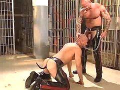 Freaky homo servant gullets mean corporalist on knees
