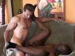 Black gentleman gets assbanging in gangbang