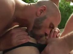 Bear gay licks bushy males booty outdoor