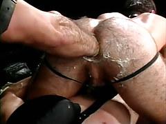Bear homosexual fistfucks hairy males arsehole