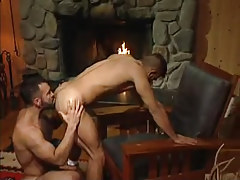 Bear fruit licks appetizing gazoo by fireplace