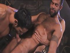 Hairy Arabian homosexual guys mouth dicks in pyramid