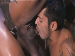 Arabian gay sucked and gets brown weenie in tight apple bottoms